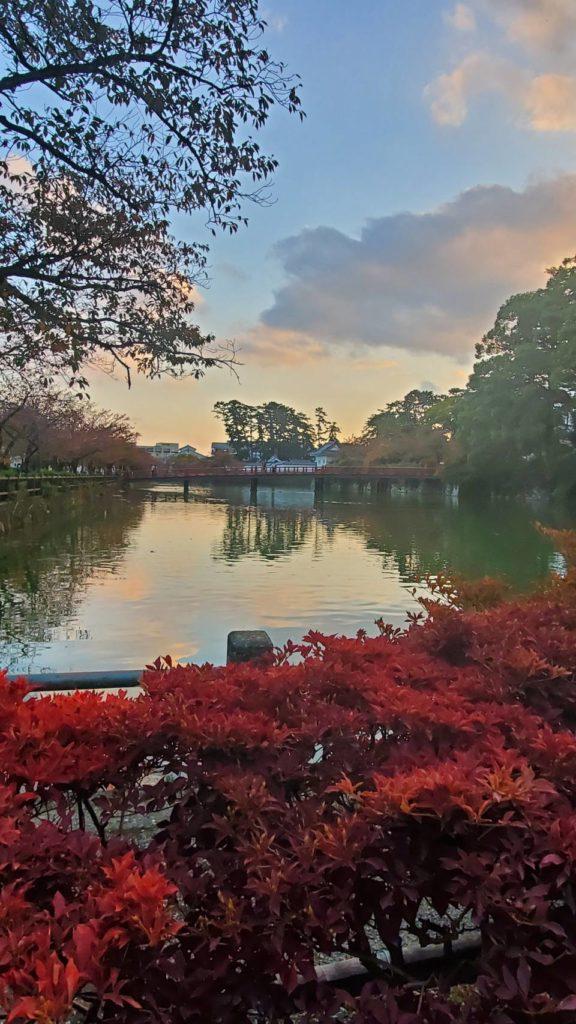 小田原城お堀端の秋